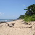 11 Rai Beach Front Land Koh Lanta
