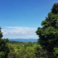 Sea View Land Koh Lanta 800SQM