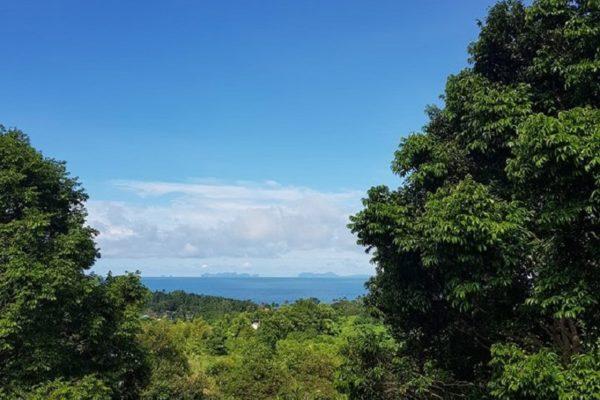 Sea View Land Koh Lanta 800SQM