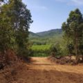 Koh Lanta Land Plots